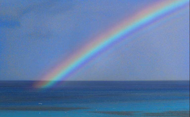 The Rainbow Journey Main Image