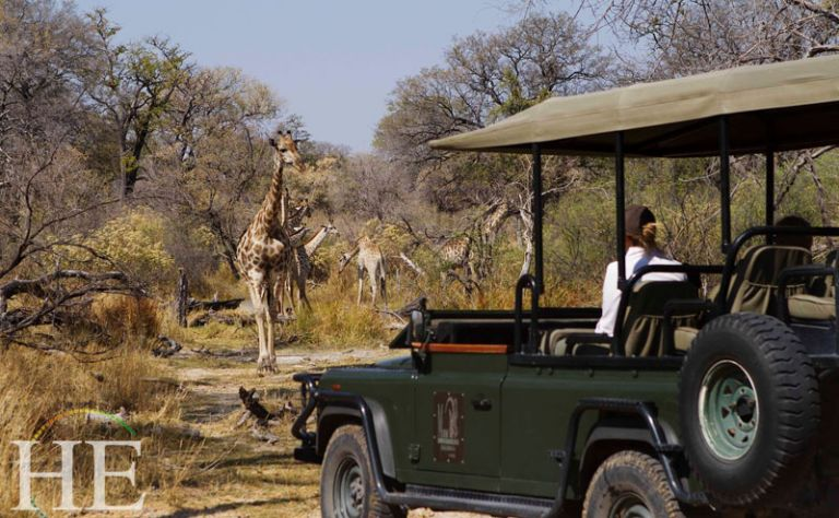 Botwana Luxury Tour (April 6 to 14, 2019) Main Image
